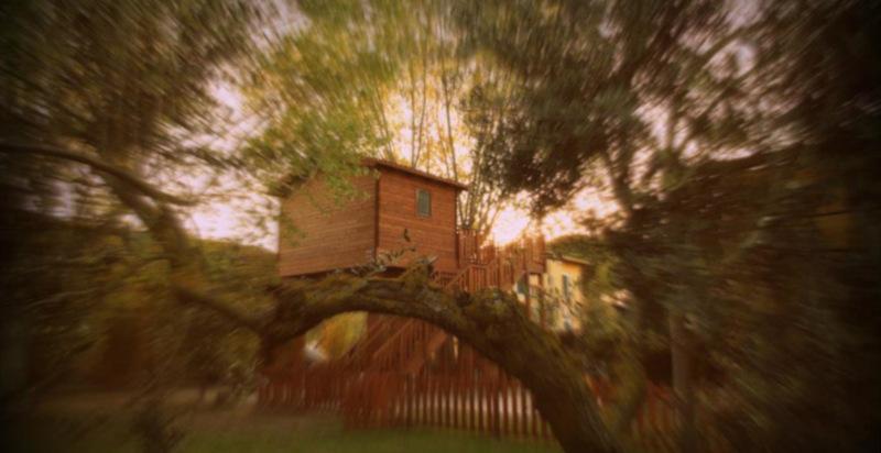 Pernottamento casa sull\'albero vicino Roma - regali 24